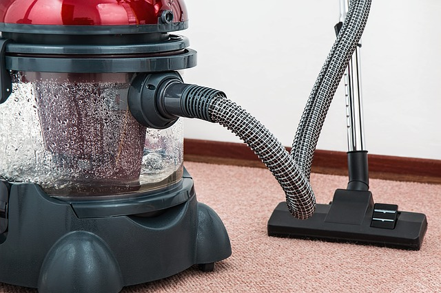 How to choose a vacuum for homes with pets