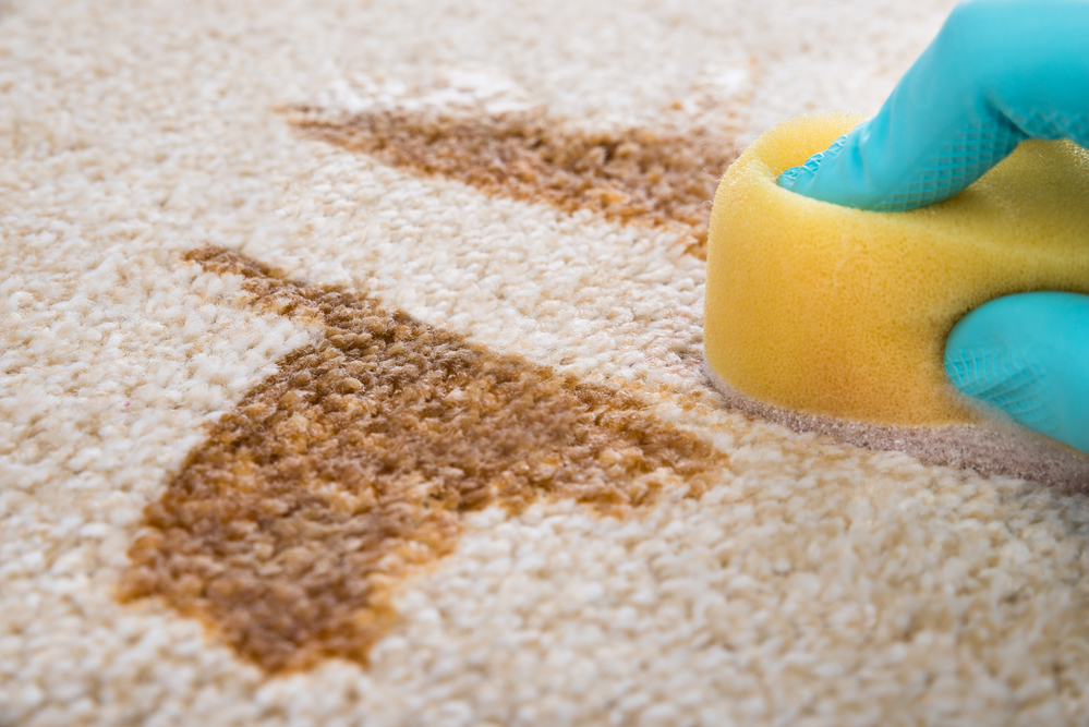 Carpet Cleaning Tips For Homeowners