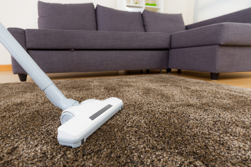 Best Vacuum Options For Homes With Carpet